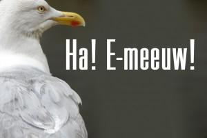 emeeuw
